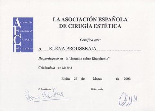 Rhinoplasty 2002